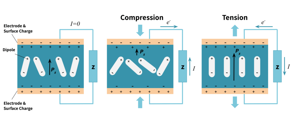 Piezoelectric effect within piezoelectric element in tension and compression