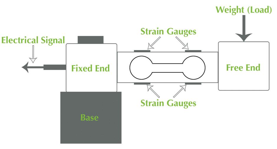 Strain Gauge Load Cell Diagram